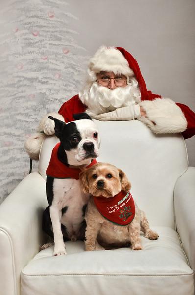 LR-Fetch Santa13-8263