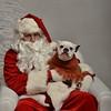 Fetch Santa13-7990