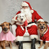 LR-Fetch Santa13-8279