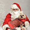 Fetch Santa13-7950