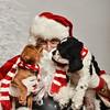 LR-Fetch Santa13-8100