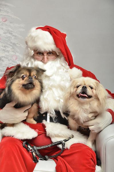 Fetch Santa13-7996