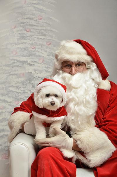 Fetch Santa13-8215