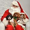 LR-Fetch Santa13-8231