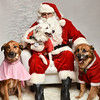 LR-Fetch Santa13-8277