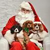 LR-Fetch Santa13-8230