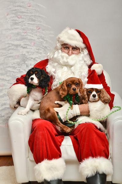 LR-Fetch Santa13-8224
