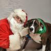 Fetch Santa13-8293