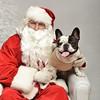 Fetch Santa13-8065