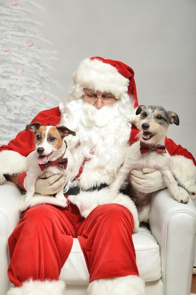 Fetch Santa13-8045