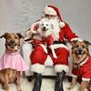LR-Fetch Santa13-8284