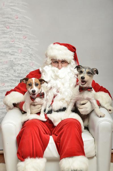 Fetch Santa13-8051