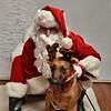 Fetch Santa13-7961