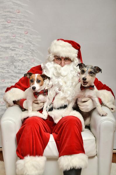 LR-Fetch Santa13-8049