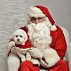 Fetch Santa13-8207