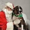 Fetch Santa13-8301