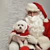 Fetch Santa13-8211