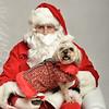 Fetch Santa13-7949