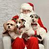 LR-Fetch Santa13-8056