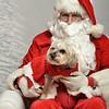 Fetch Santa13-7955