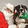 Fetch Santa13-8305