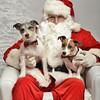 Fetch Santa13-8031