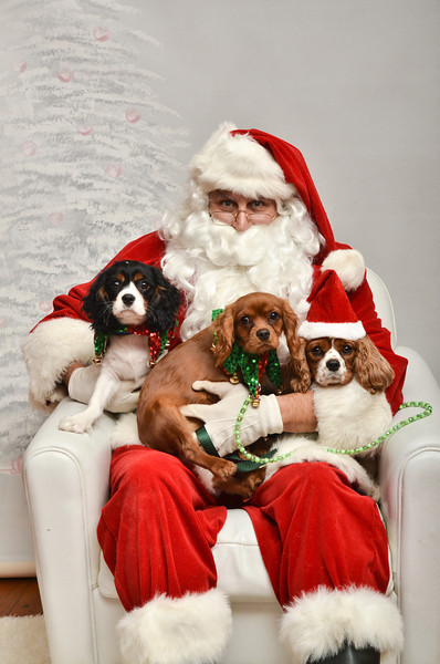 LR-Fetch Santa13-8223