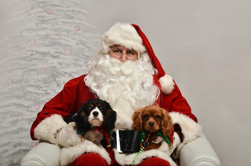 LR-Fetch Santa13-8235