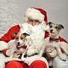 LR-Fetch Santa13-8040