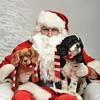 Fetch Santa13-8086