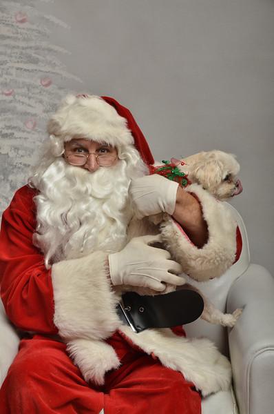 Fetch Santa13-8196