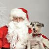 Fetch Santa13-8034
