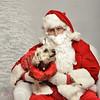 Fetch Santa13-7946