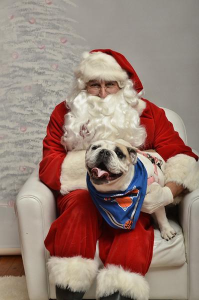 Fetch Santa13-8167