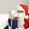 Fetch Santa13-8135