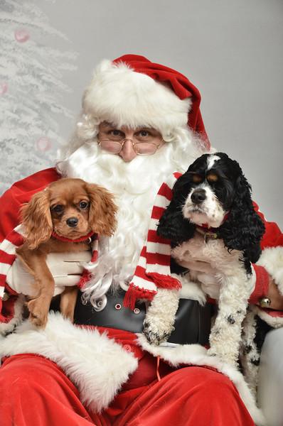 Fetch Santa13-8102