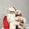 Fetch Santa13-8192