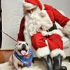 Fetch Santa13-8170