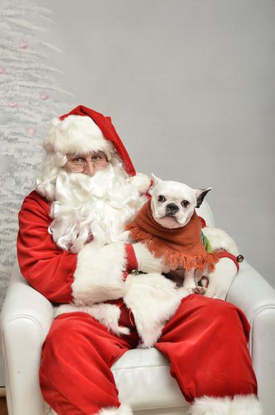Fetch Santa13-7989