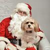 Fetch Santa13-8013