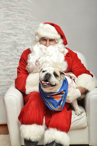 Fetch Santa13-8168