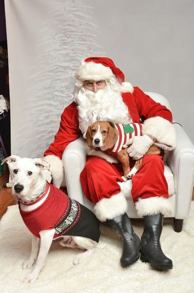 LR-Fetch Santa13-8266