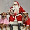 LR-Fetch Santa13-8280