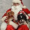 Fetch Santa13-8083