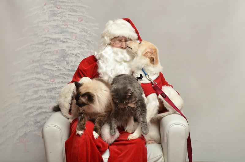 Fetch Santa13-8176