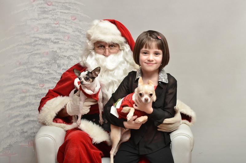 Fetch Santa13-8197