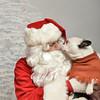 Fetch Santa13-7988