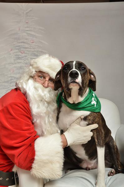 Fetch Santa13-8302