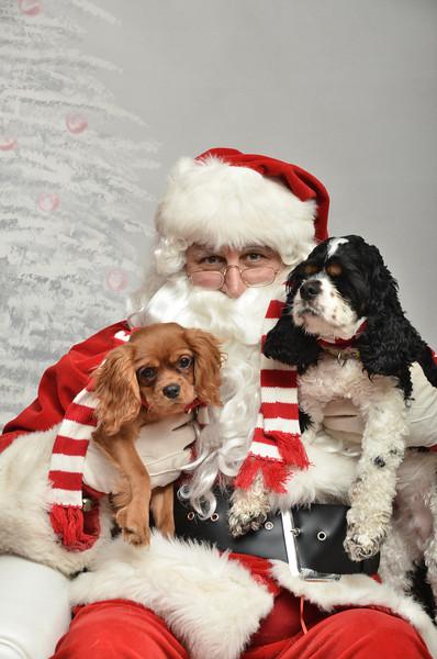 Fetch Santa13-8097
