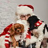 LR-Fetch Santa13-8098